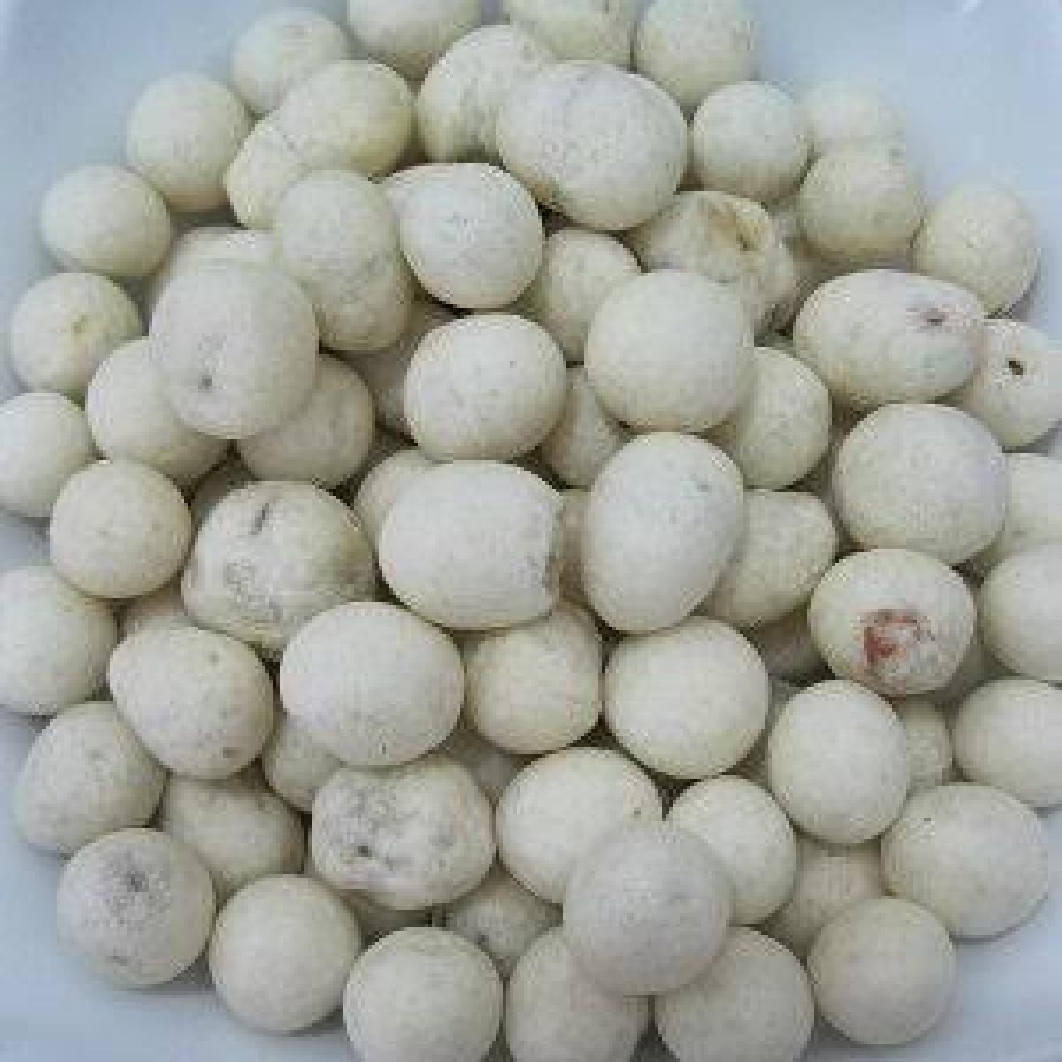 Kacang Sukro original camilan lezat & gurih 200 gr